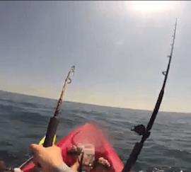 Un pécheur tracté par un requin dans son kanoé