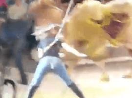 une femme craque son pantalon sur un chameau et se retrouve les fesses à l'air