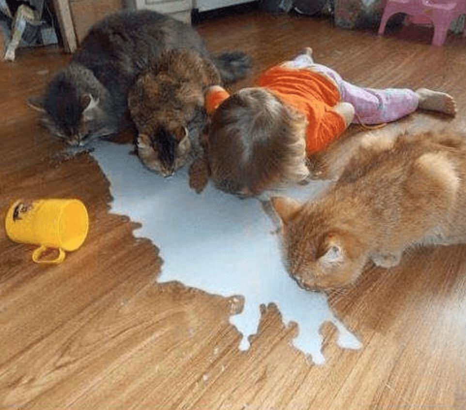 P'tit déj en famille