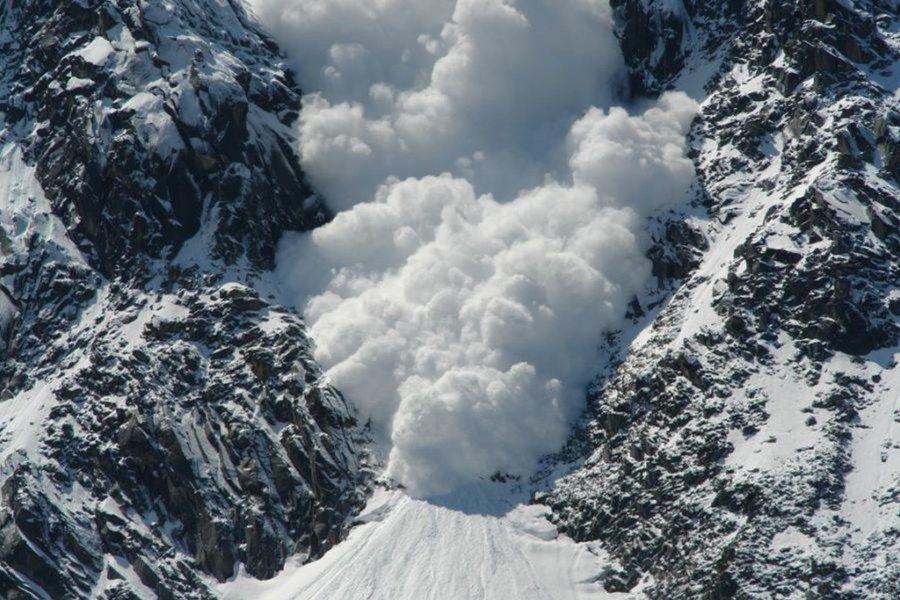 avalanche_gros_plan