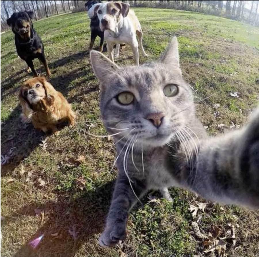 chat_selfie_1