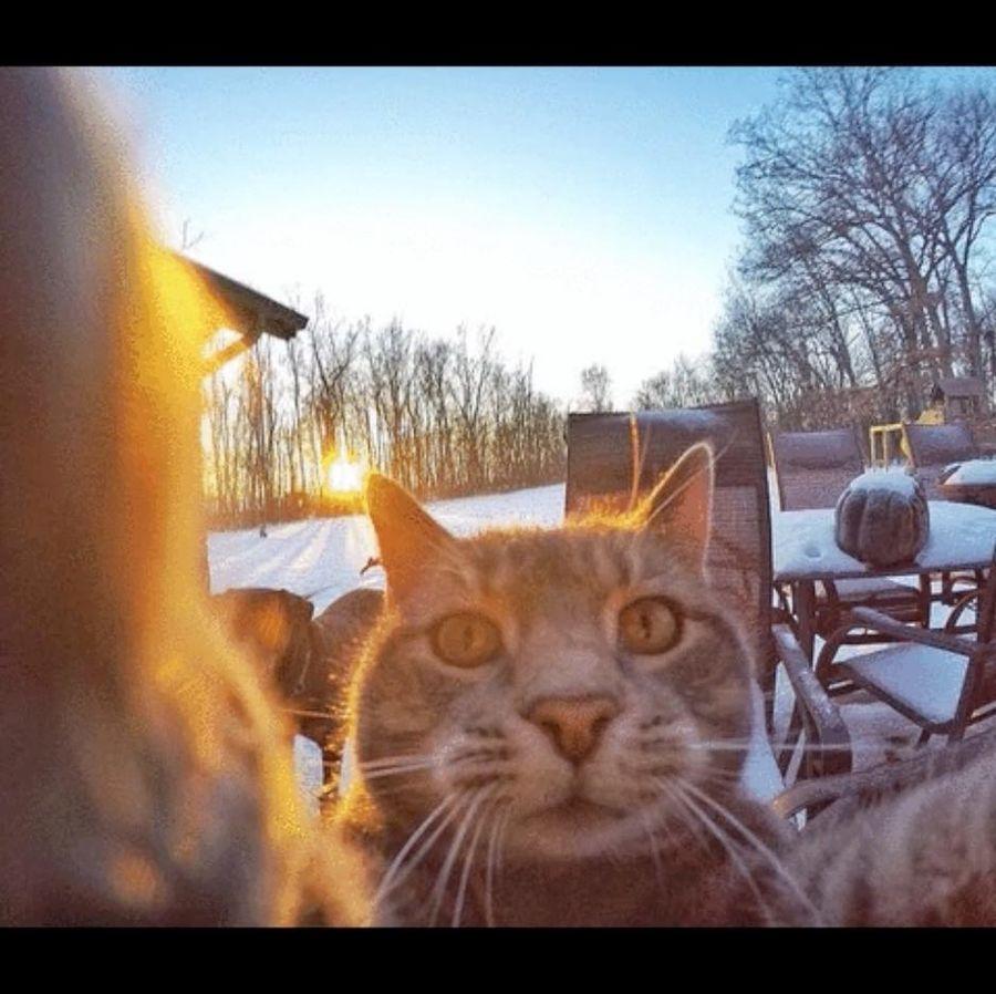 chat_selfie_4