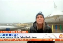 journaliste_meteo_assomée_poisson_direct